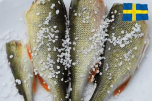 abborre svensk